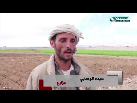 البناء والقات يغزوان الأراضي الزراعيه في محافظة ذمار