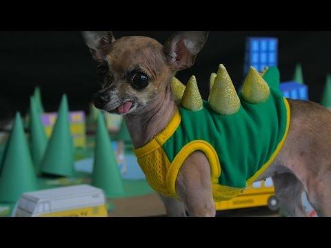 GODZILLA As Performed By Dogs (DOGZILLA)