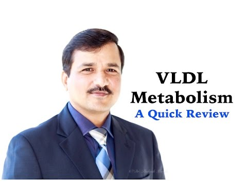 Metabolism of VLDL - A Quick Review
