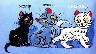 Три котёнка 2014 - три котёнка мультфильм