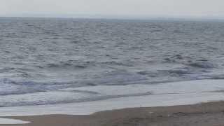 """видео Океанские """"ландшафты"""""""