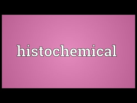 Histochemical Meaning
