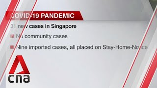 Singapore reports 31 new COVID-19 cases