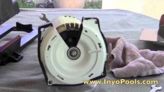 Inyopools.com - How to replace a pool pump impeller