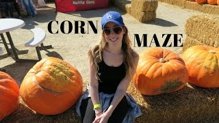 Corn Maze And Pumpkin Patch In Los Angeles