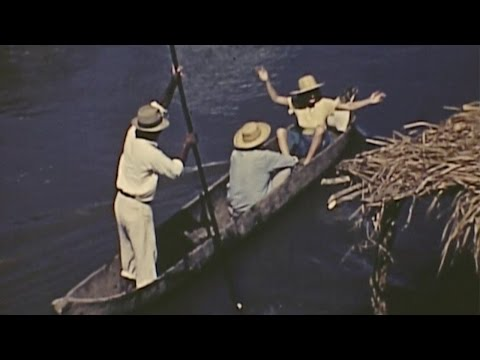 University Museums Panama Expedition (1940)