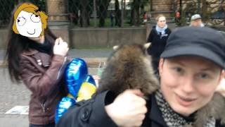 Атака енотов