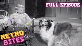 Lassie | A Christmas Story | Christmas Special | Full Episodes  🐕🎄