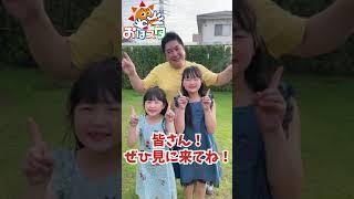 テレビ出演のお知らせ! #Shorts - はねまりチャンネル