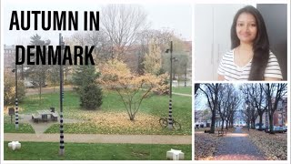 MY SUNDAY VLOG | AUTUMN IN DENMARK | FALL COLORS | AUTUMN | WEEKEND VLOG DENMARK | DIML