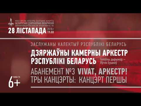 Государственный камерный оркестр РБ 28 ноября