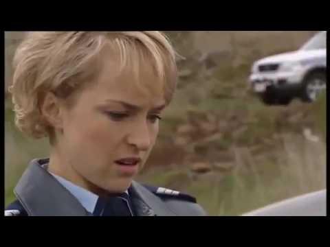 Blue Heelers - 9x37   Teamwork