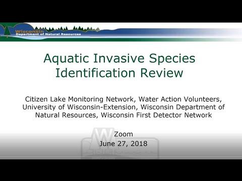 Aquatic Invasive Species ID Webinar May 27 2020