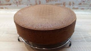 ШОКОЛАДНЫЙ БИСКВИТ идеальный РЕЦЕПТ БИСКВИТА который НЕ ОПАДАЕТ и ПОЛУЧАЕТСЯ ВСЕГДА | Sponge Cake