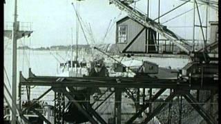 Oslo havn - byens hjerte. 1952. Arena-Film AS