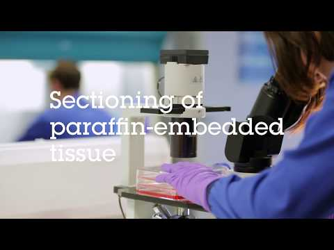 Sectioning Of Paraffin Embedded Tissue Video Protocol
