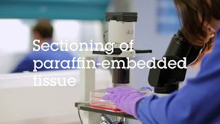 Gambar cover Sectioning of paraffin embedded tissue video protocol