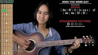 Wish You Were Gay Guitar Cover Acoustic Billie Eilish 🎸 |Tabs + Chords|