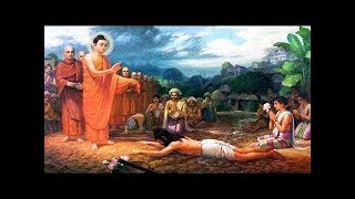 Truyện Kể Đêm Khuya   Chuyện Nhân Quả Phật Giáo Hay Nhất   BỊ ĐỌA LÀM CHÓ TRƯỚC KHI CHẾT