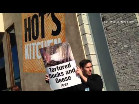 #PETA protest over serving of foie gras at Hot's Kitchen in Hermosa Beach. #foiegras