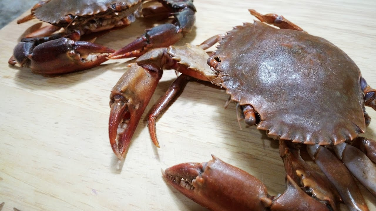 How To Clean & Cut Crab | Cooking Basics | For Beginners - Chef Lall's Kitchen