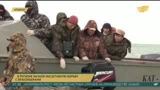 видео Охота на Браконьеров в Приморье. Новости Дня