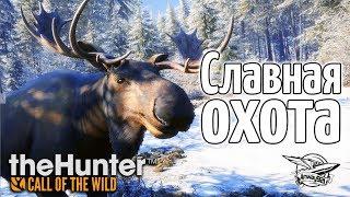 Стрим - theHunter: Call of the Wild - Славная охота