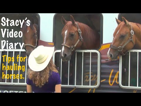 Trailering is hard for the horse, do you have tips for keeping your horse sane?