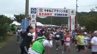 ヤマネコマラソンのスタート
