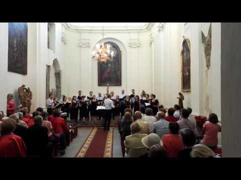Cantus Vocum Chamber Choir
