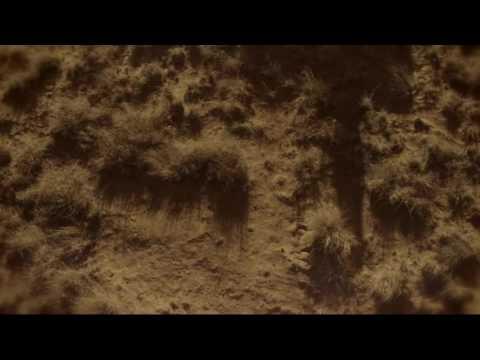 Preacher | hanging tree | jesse + cassady