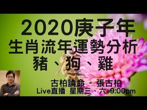 2020年歲次庚子年12生肖流年運勢分析 (一)  – 豬、狗、雞