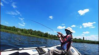 Сменил ПЕРСИК на и ловил рыбу Рыбалка на спиннинг летом