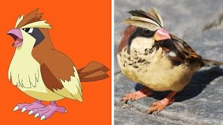 10 Pokémon Reales (POKÉMON GO) Pte 2