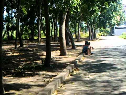 danh lon giua cac bang nhom (quan Binh Tan)