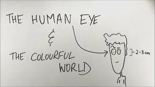 The Human Eye and The Colourful World - ep01 - BKP | Class 10 boards science physics in hindi tips