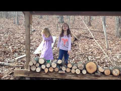 DIY homemade wood rack for firewood storage dry pine oak