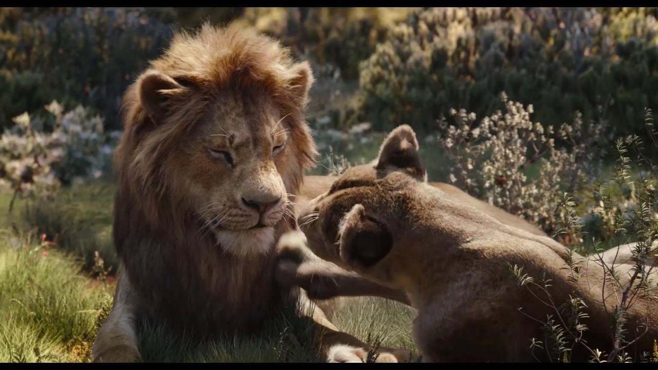 ライオン キング 賢人 賀来