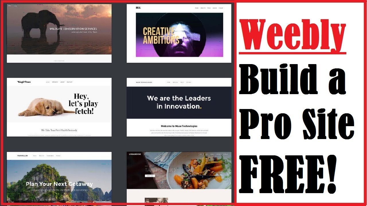 Weebly Review: What is it? Is Weebly Free? How to Make A Weebly Website and  Blog Tutorial