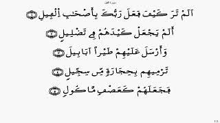 سورة الفيل 028   ياسين الجزائري برواية ورش