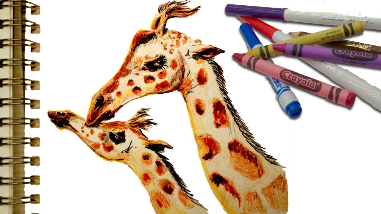 Art Supplies How To Draw A Mother Giraffe And Baby