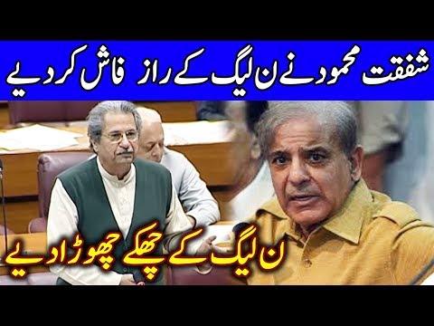 Shafqat Mehmood Speech