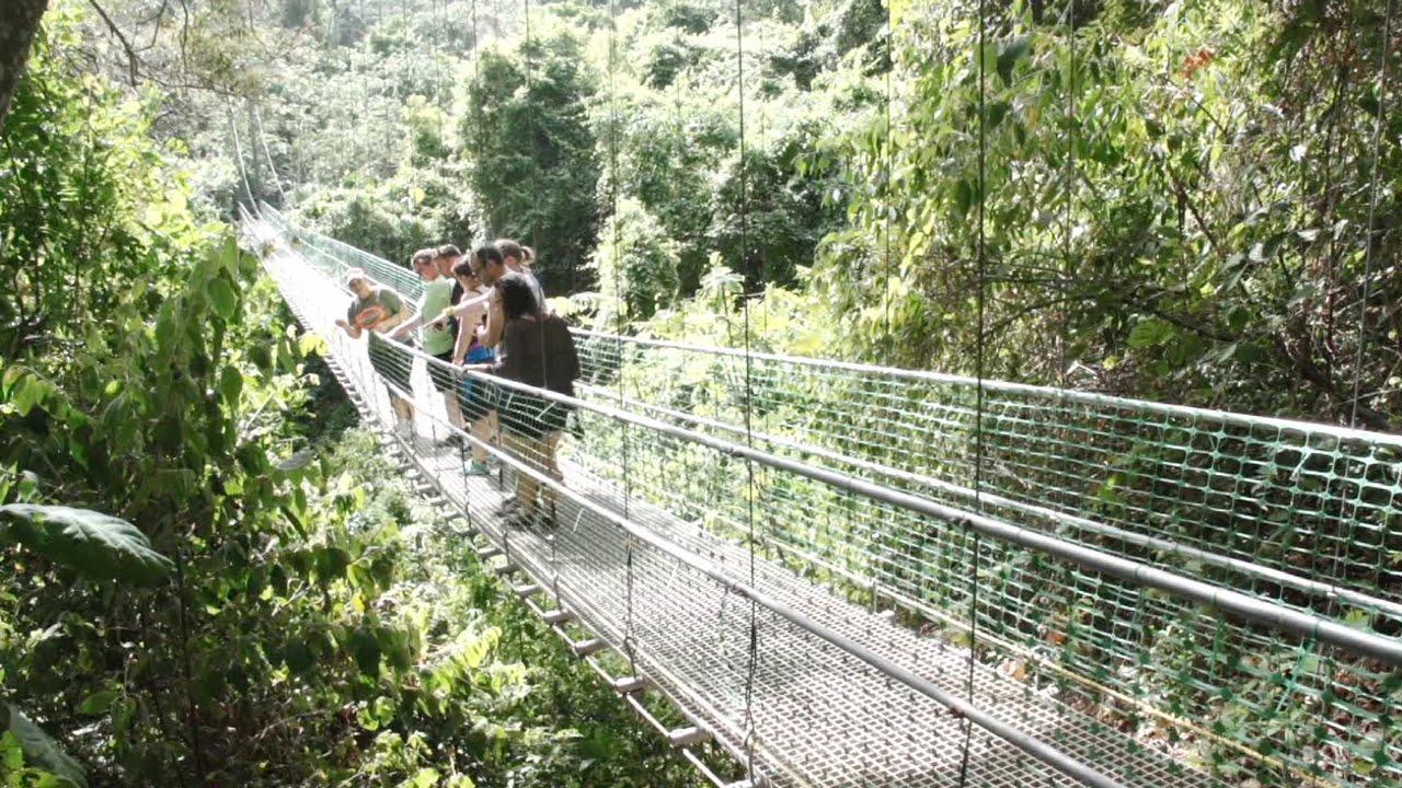 & South Shore Canopy Zip Line Roatan - YouTube