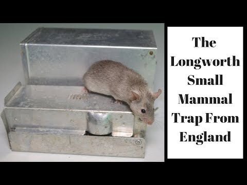 The Longworth Small Mammal Trap From England. Mousetrap Monday