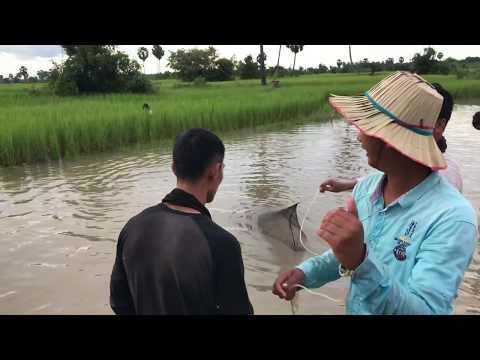 រៀនបង់ត្រីលេងសោះបានម៉ាចៀនដែរ---cambodia-funny-fisher
