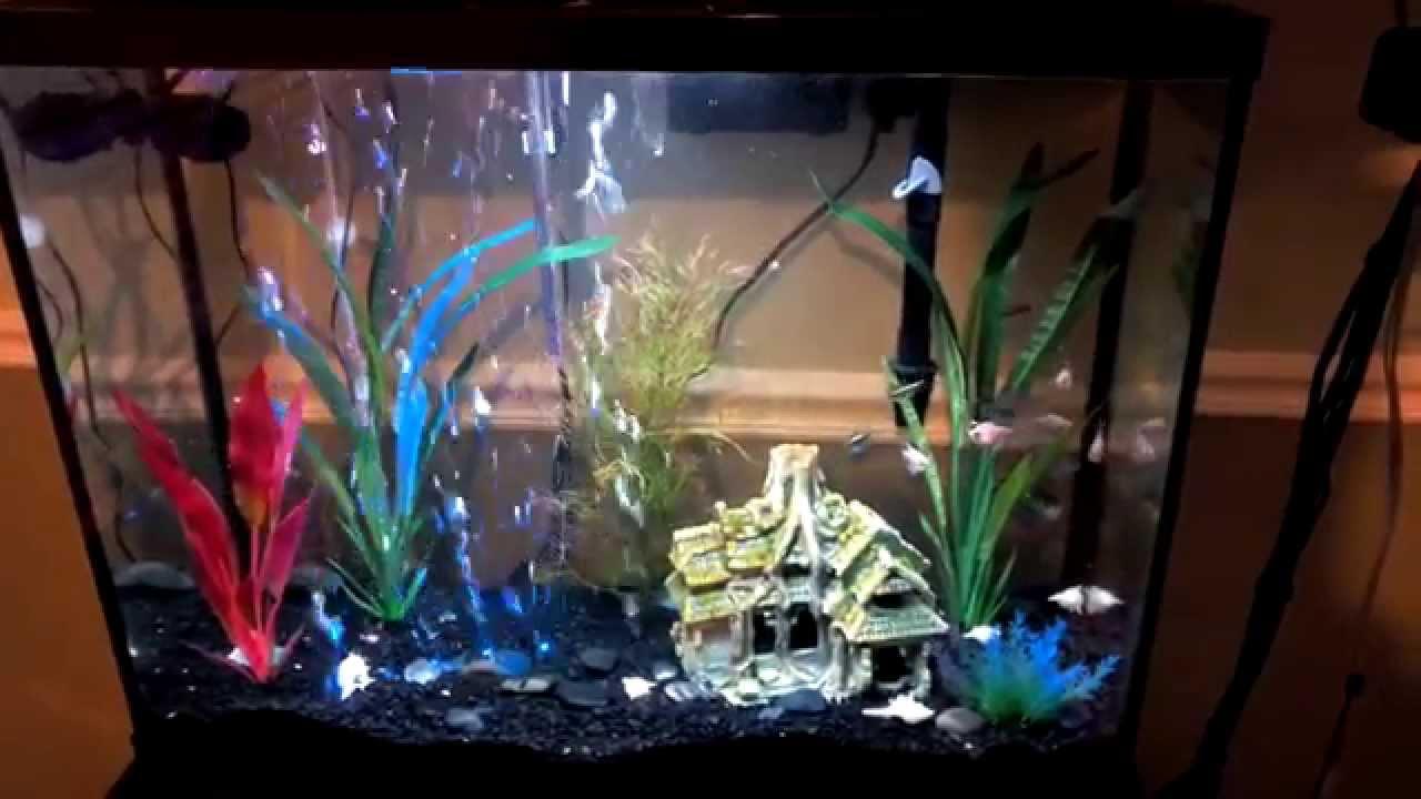 aquarium with 14 inch aqueon flex led aquarium bubble wand. Black Bedroom Furniture Sets. Home Design Ideas