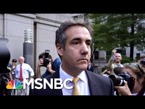 Michael Cohen Sentencing Memo Recommends 42 Months In Jail, $100,000 Fine | MTP Daily | MSNBC