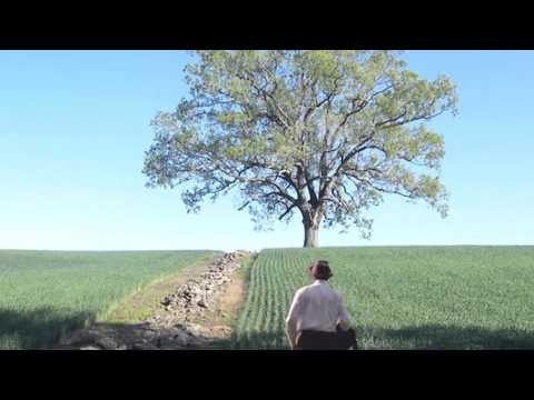 """So Was Red/End Title"" from The Shawshank Redemption (1994) by Thomas Newman - 800% Slower"