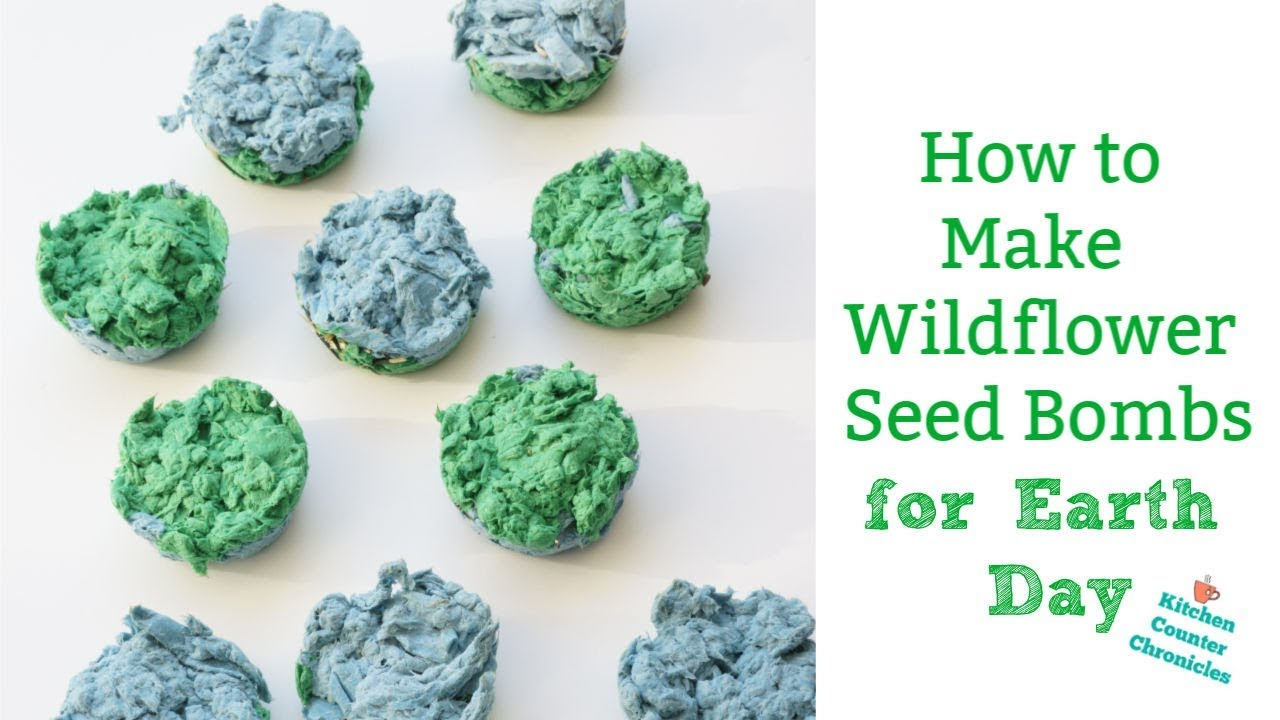 How To Make Seed Bombs For Earth Day