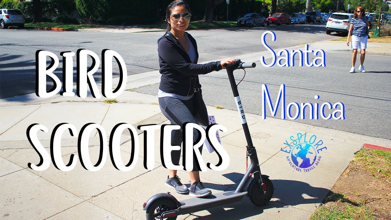 Bird Scooter - What is Bird? How to Use Bird (+ Free Ride Promo Code)